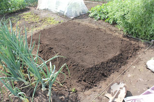 夏野菜の土作り