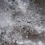 ニンニク/玉ねぎの跡地に消石灰散布