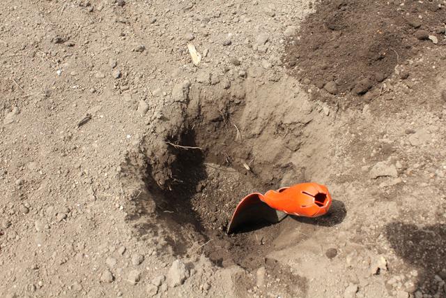 乾燥した畑の土
