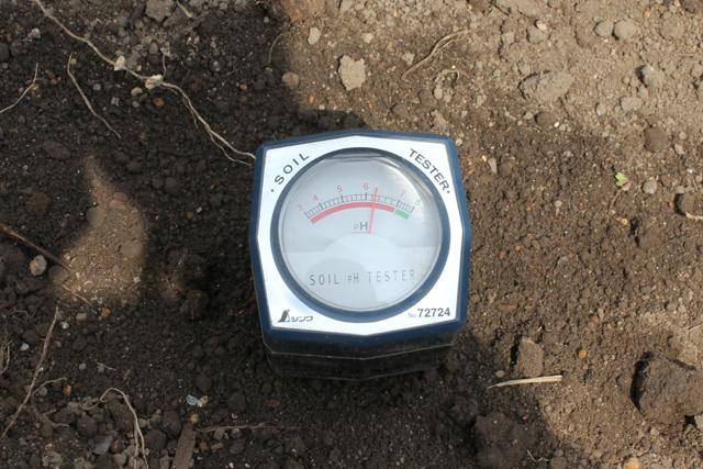 畑のpH値測定